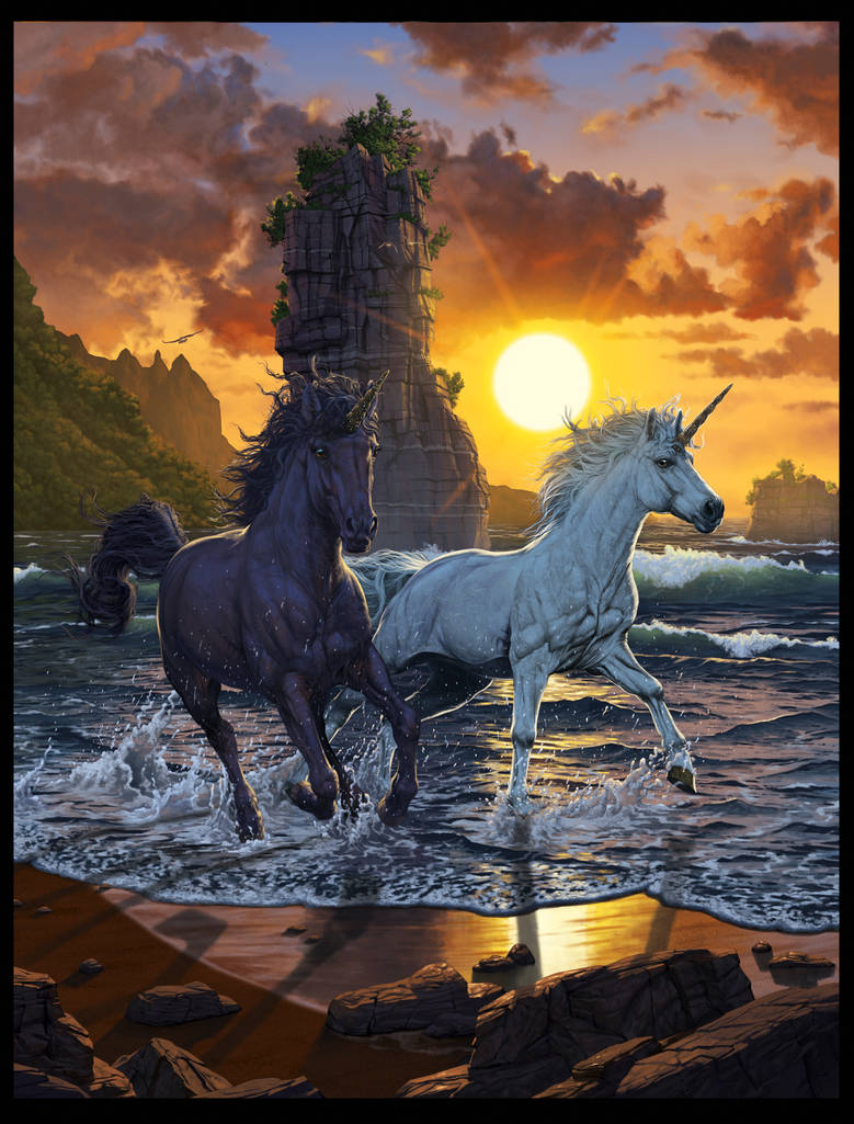 Unicorns in Sunset by wallace