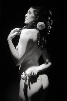 Sienna Hayes