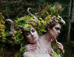 Forest Fauns