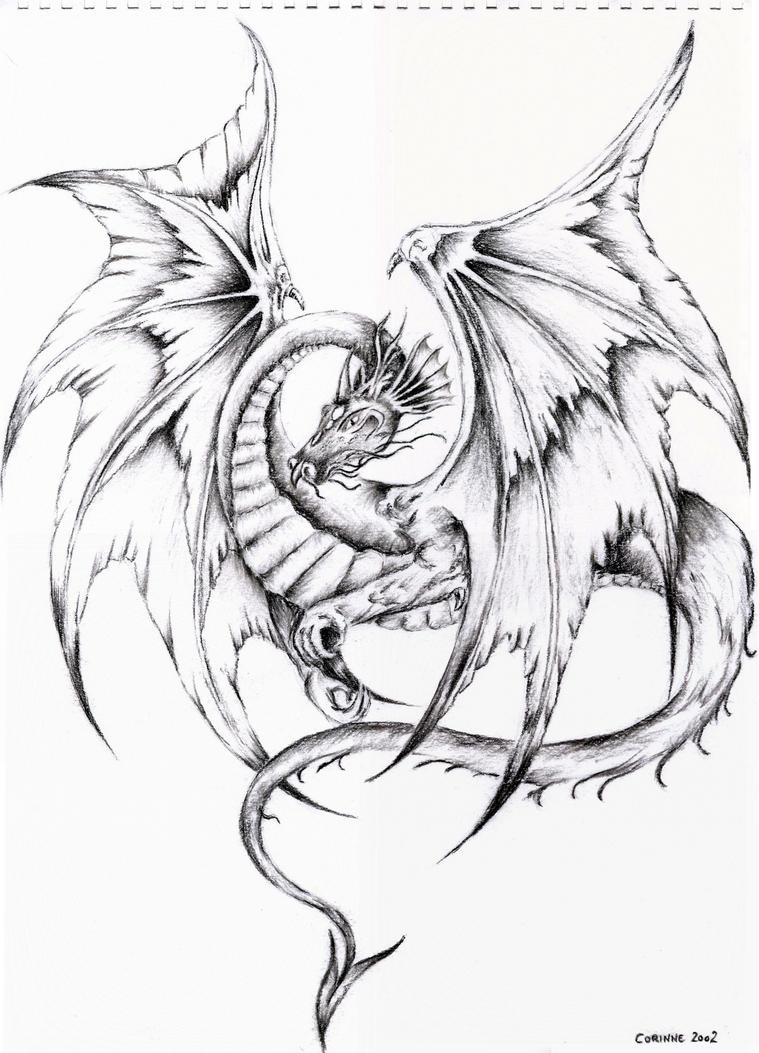 Awesome Flying Dragon Drawings Images & Pictures - Becuo