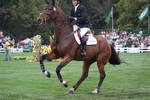 Galloping 1
