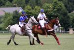 Galloping 8