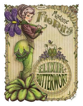 GDG Vol.4 Book - Butterwort