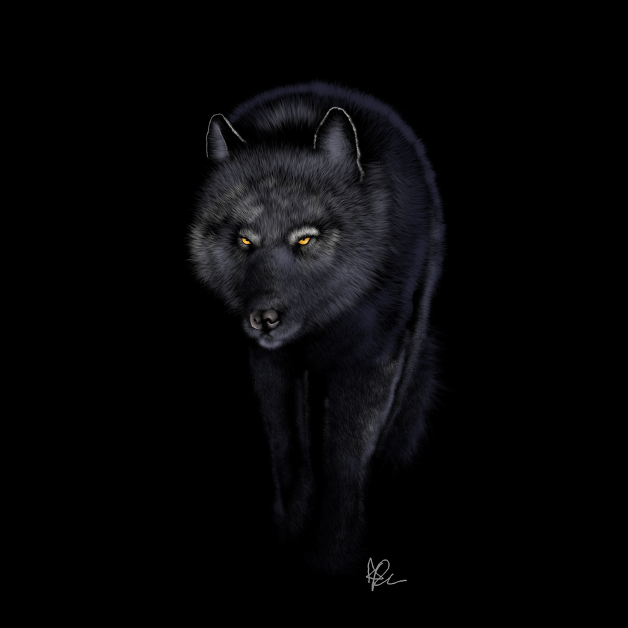 Black wolf with blue eyes drawing - photo#5