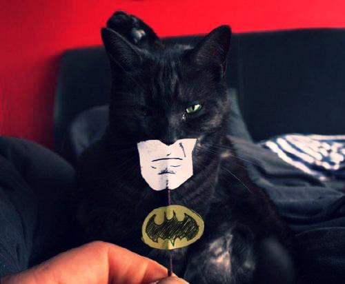 Скачать песню потому что я бэтмен человек летучая мышь