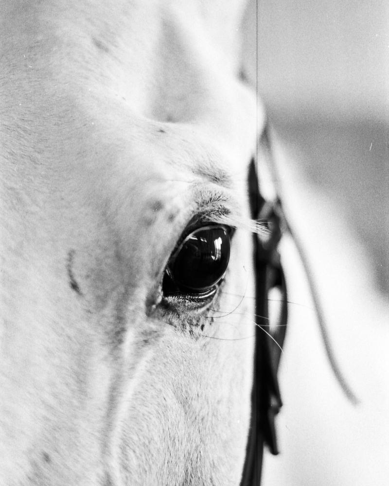 Kind Eye by AkimaDoll