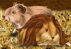 Animal Contest:Guinea Pig Lion by LionKingFanClub