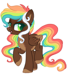 Rainbow Flash | not for sell