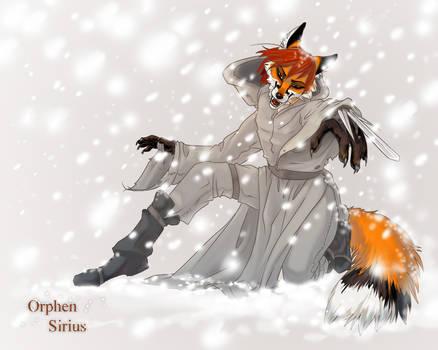 Necrey in snow