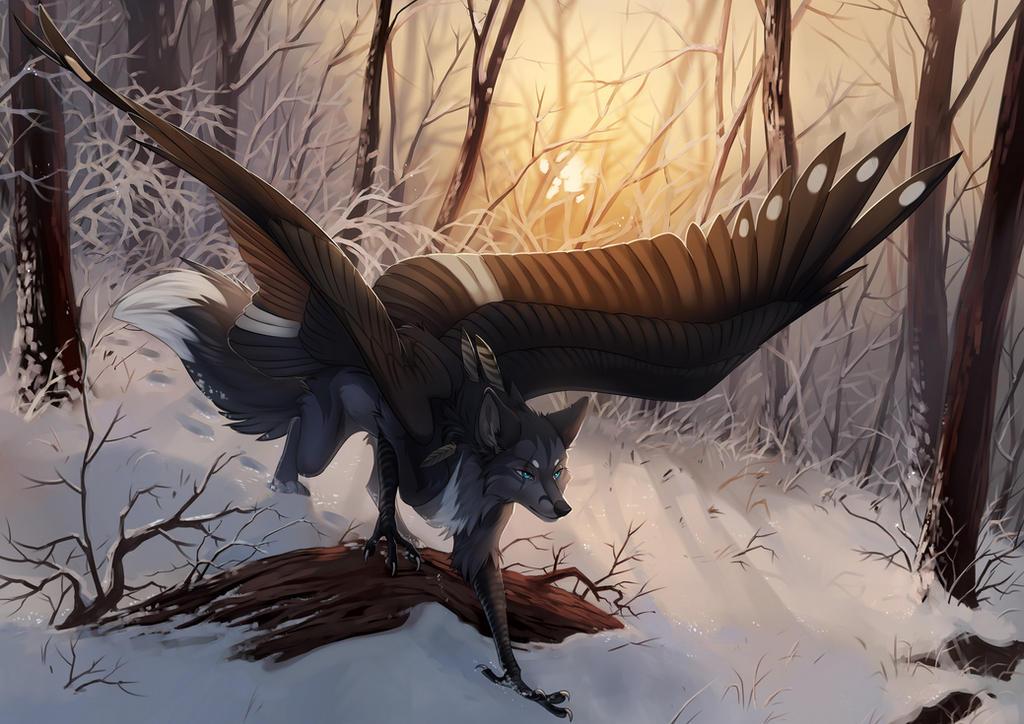 winter morning by Orphen-Sirius