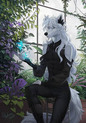 Salvator for Yuxare by Orphen-Sirius