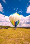 Balloon SIngle