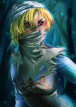 Legend of Zelda: SHEIK