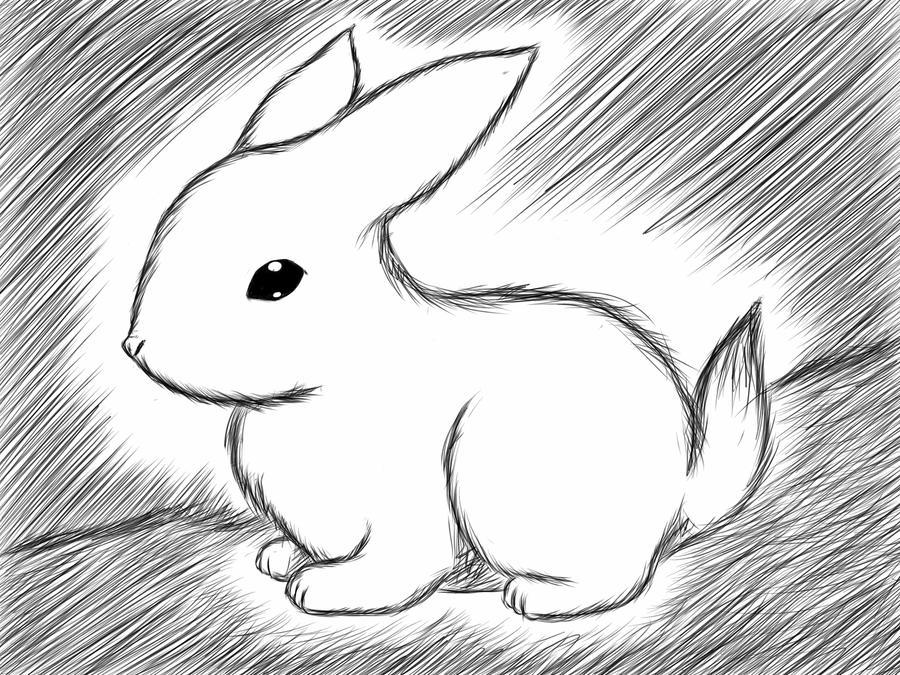 Quick sketch: bunny by jjjjoooo1234