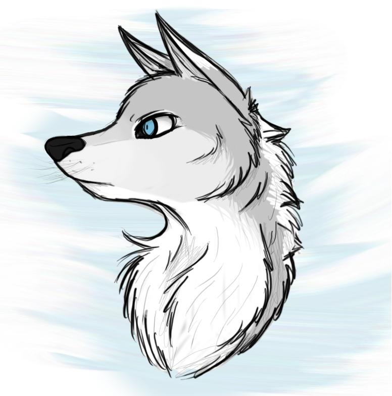 Akila - sketch by xXAkilaXx