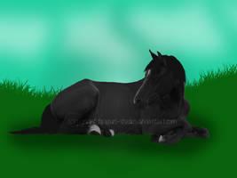 Laying Pony by siren-studios