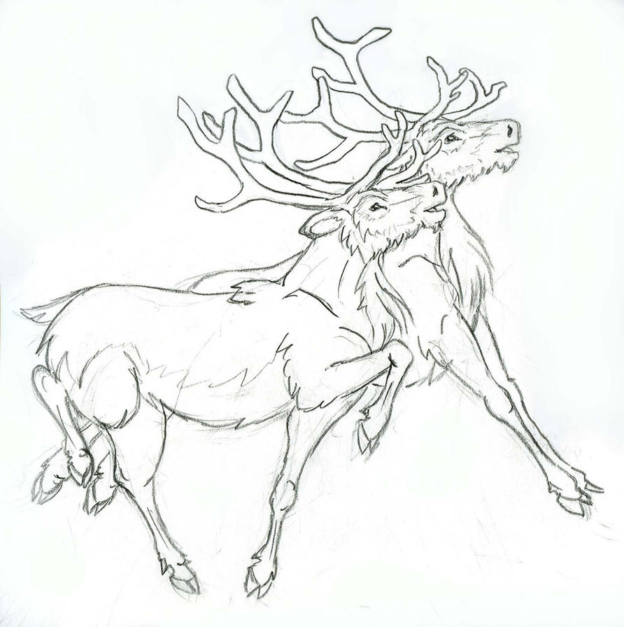 Line Drawing Reindeer : Reindeer line sketch templates