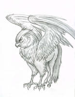 Hippogriff by Lizzy23