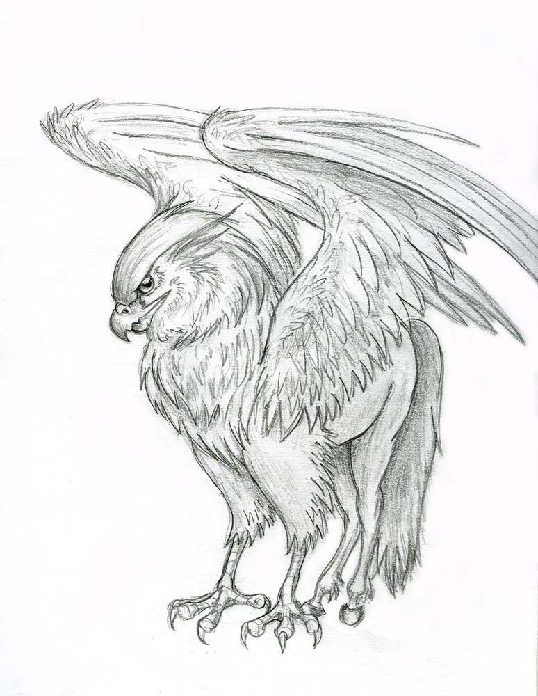 buckbeak coloring pages - photo#48
