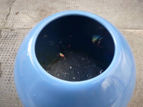 Bubbly Vase I