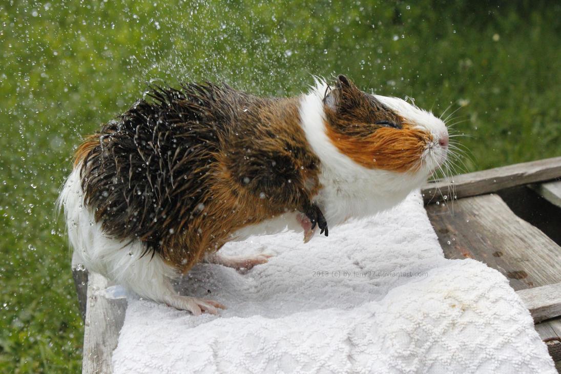 Splash by Calitha-Lena