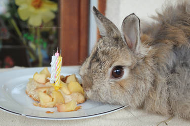 Happy birthday Felix!! by Calitha-Lena