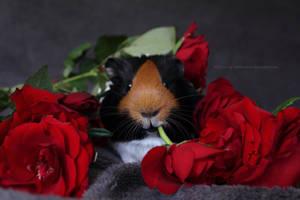 sweet black lips by Calitha-Lena