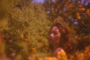 Spring. by OliviaDileo
