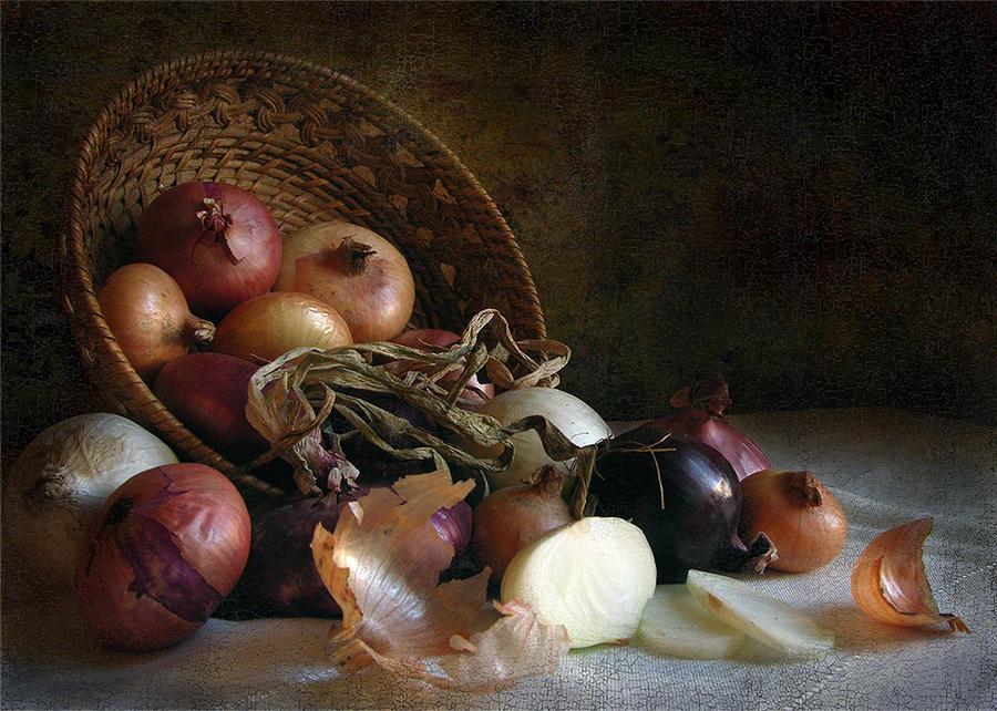 Onion by kopalov