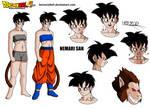 Nemari San Character sheet DBA