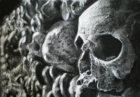 skulls study drawing A4 charcoal by Helsartpage
