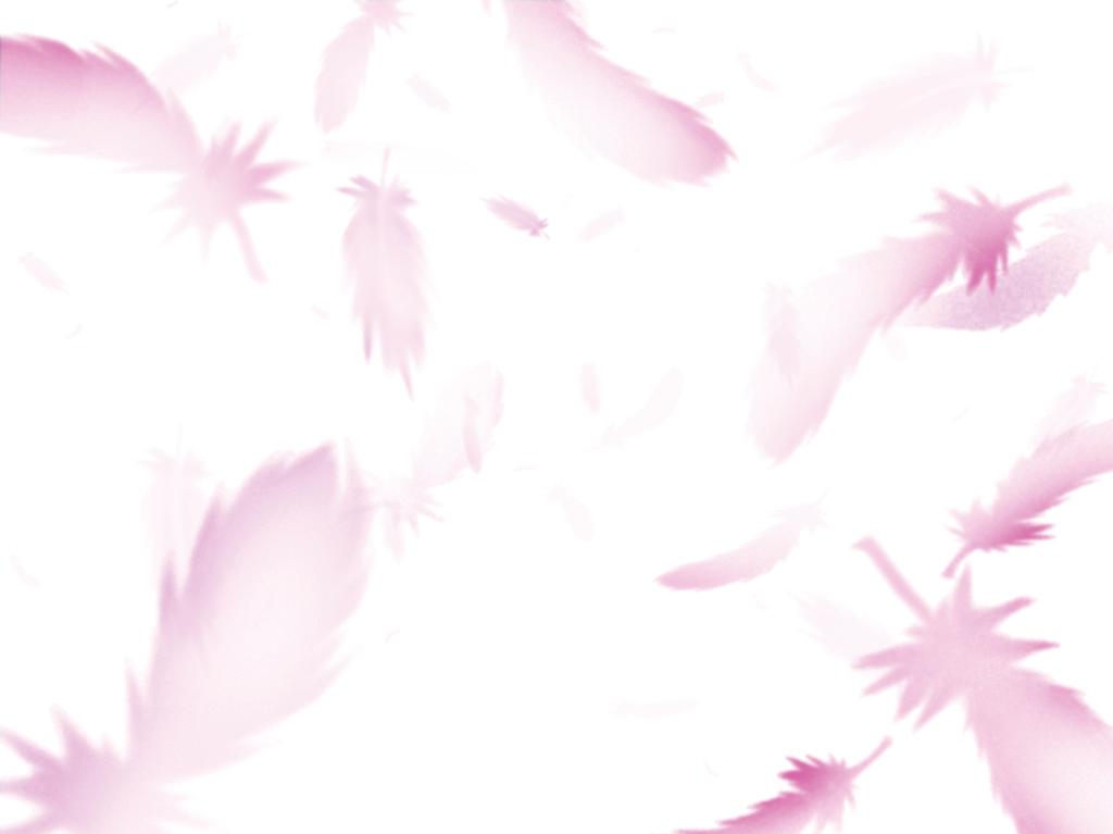 Angel wings left behind~