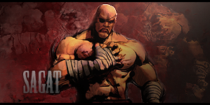 Sagat Forum Signature by arpeejajo