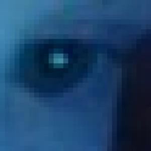 alexcervantes's Profile Picture