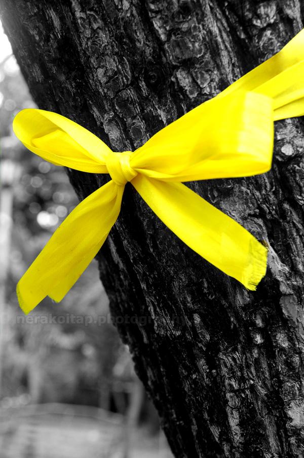 tie a yellow ribbon.