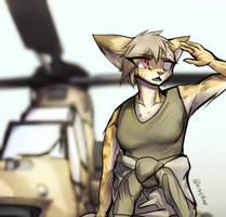 Gunship pilot ver.