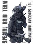 1st Sergeant Hartman