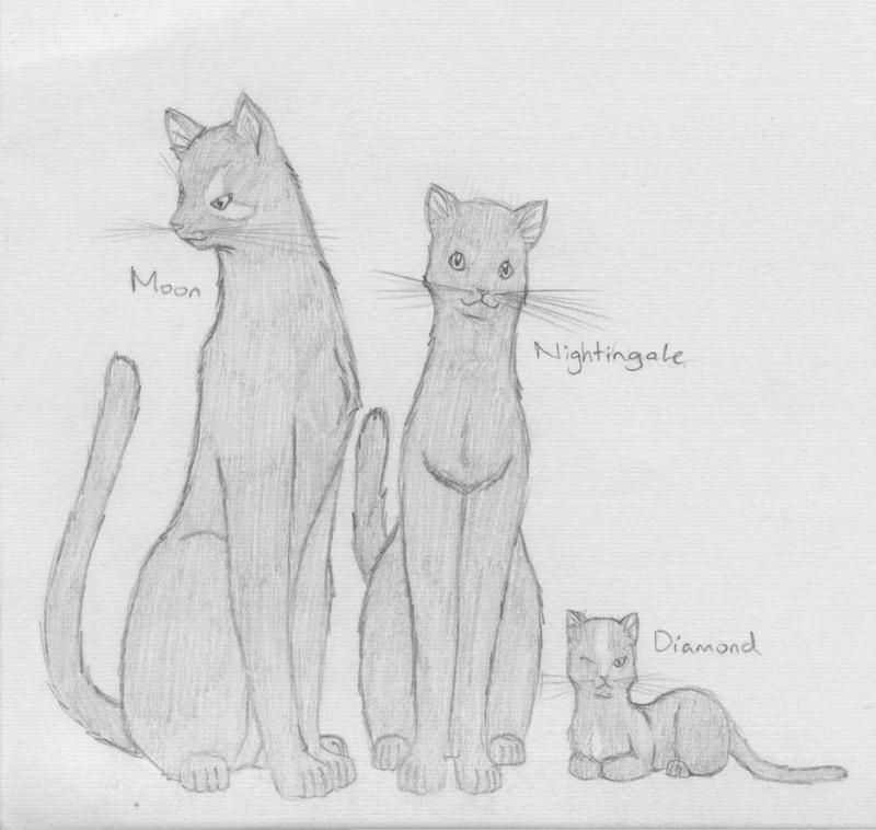 Warrior Cats Familyby Sa As Mi Ao Na