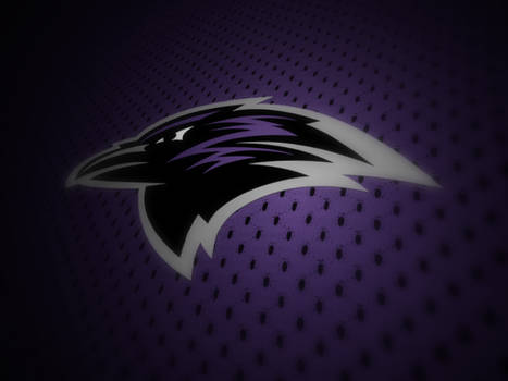 roskilde ravens proposed logo.