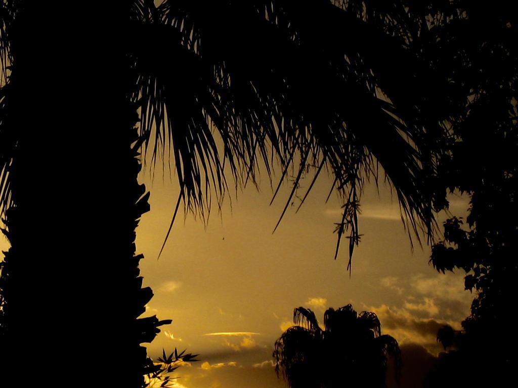 Arizona Sunrise 071115 by acurmudgeon