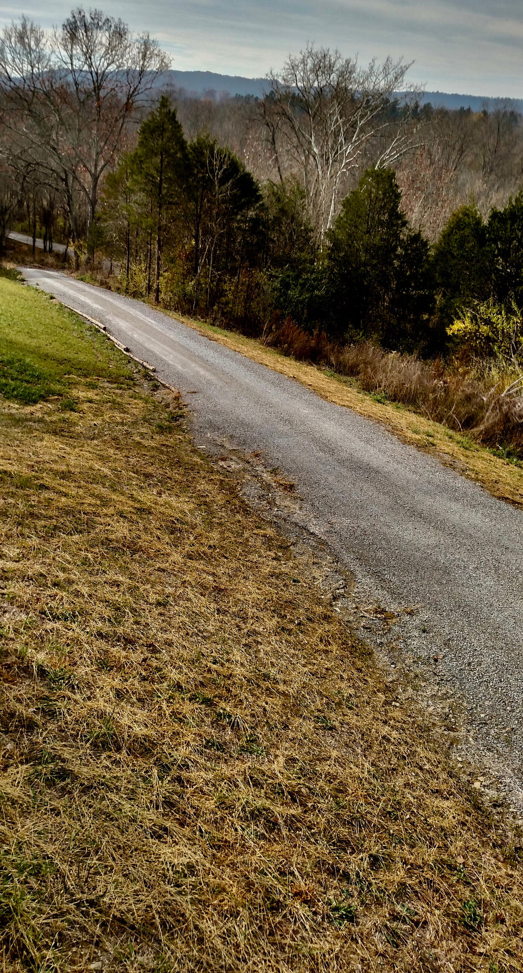 Kentucky Driveway 11/16 by acurmudgeon
