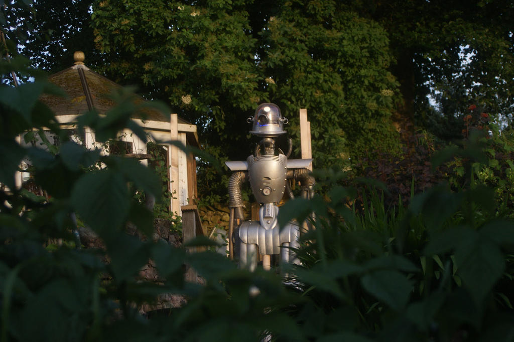 Roscoe In Garden by TheOldGoat1955