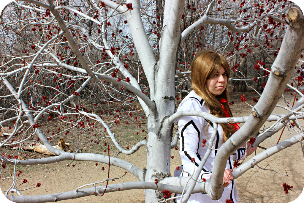 Vampire Knight: Through the Trees by SerenaDoll