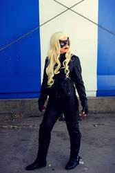 Arrow: The Black Canary