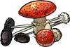 Mushrooms by TokoTime