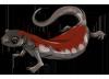 Red Salamander by TokoTime