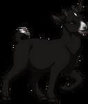 Black Pygmy Goat by TokoTime