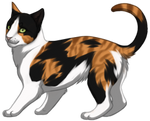 Calico Cat by TokoTime