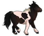 Piebald Bay Miniature Horse by TokoTime