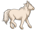 White Miniature Horse by TokoTime